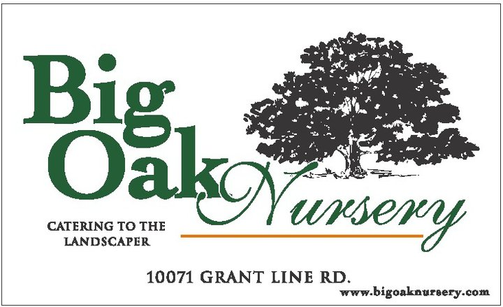 Big Oak Nursery logo