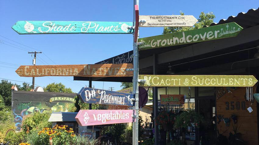 Plant Foundry signs