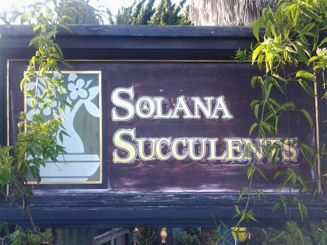 Solana Succulents sign